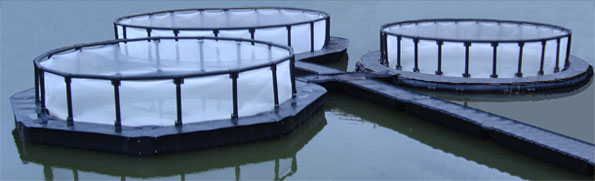 net cage and mooring systems